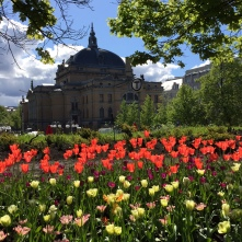 Frühling am Nationaltheater, Copyright: insidenorway