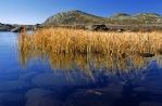 Hardangervidda, die größte Hochebene Europas, Copyright: Anders Gjengedal - Visitnorway.com