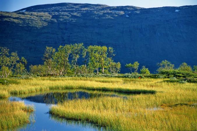 Høstmyr, Nordland, Copyright: Anders Gjengedal - Visitnorway.com