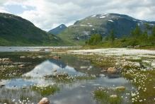Copyright: Gunder Gabrielsen / www.nordnorge.com / Berg