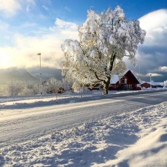 Elnesvågen, Copyright: insidenorway