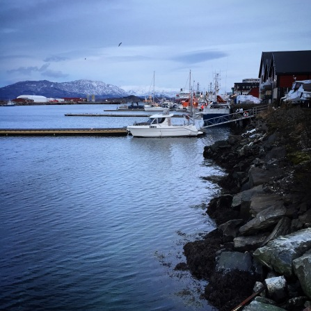 Sandnessjøen, Copyright: insidenorway