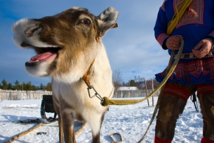 Copyright: Katja Rykova / www.nordnorge.com / Kautokeino