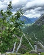 Trollstigen, Copyright: insidenorway