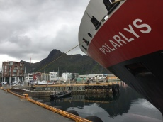 Die MS Polarlys in Svolvær