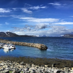 Rypefjord, Copyright: insidenorway