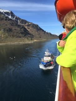 Das Tenderboot für die Seeadler-Safari ist im Anmarsch